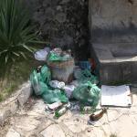 Продолжува негрижата на поединци за чистата животна средина во Делчевско